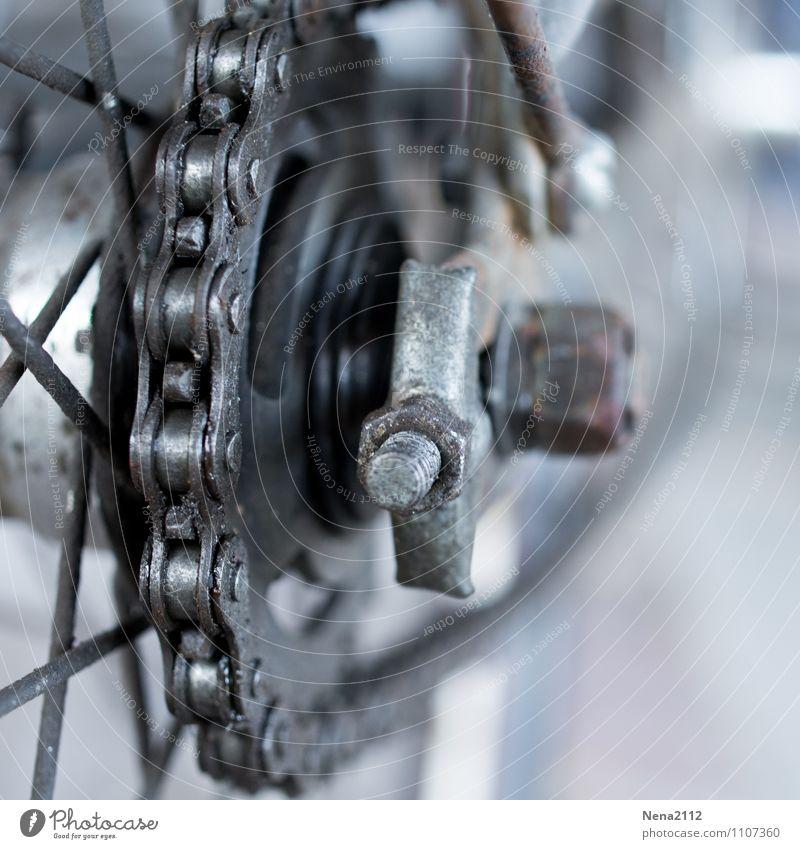 Gas geben :) Ferien & Urlaub & Reisen Sport grau Freizeit & Hobby Verkehr Fahrrad Ausflug Fahrradfahren Fitness Reinigen Fahrradtour Kette Personenverkehr