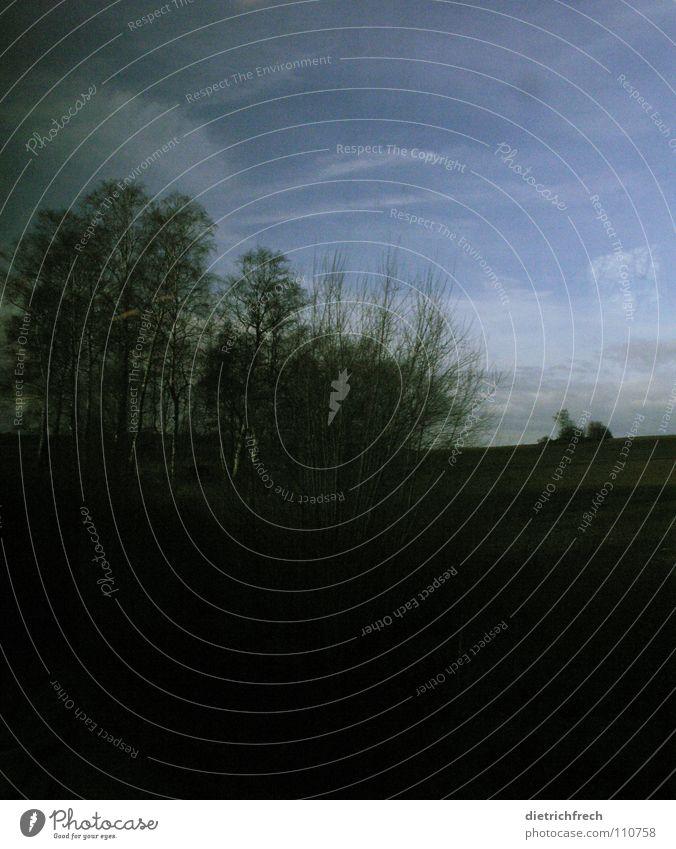 Schafft Land Natur schön Himmel Baum grün blau Ferien & Urlaub & Reisen Wolken dunkel Erholung Herbst Wiese Tod Landschaft Luft