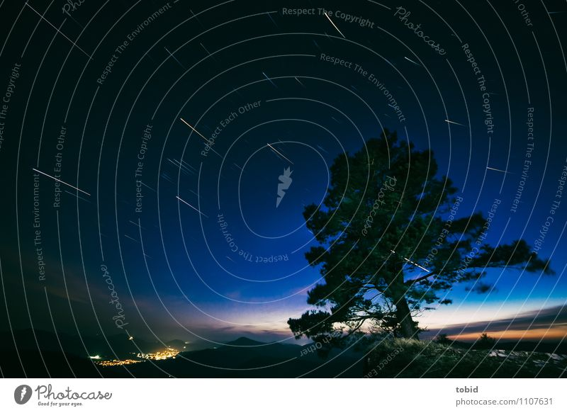 Startrails Natur Landschaft Pflanze Himmel Wolkenloser Himmel Nachthimmel Stern Horizont Baum Gras Wald Hügel Berge u. Gebirge Felsvorsprung Dorf Bewegung
