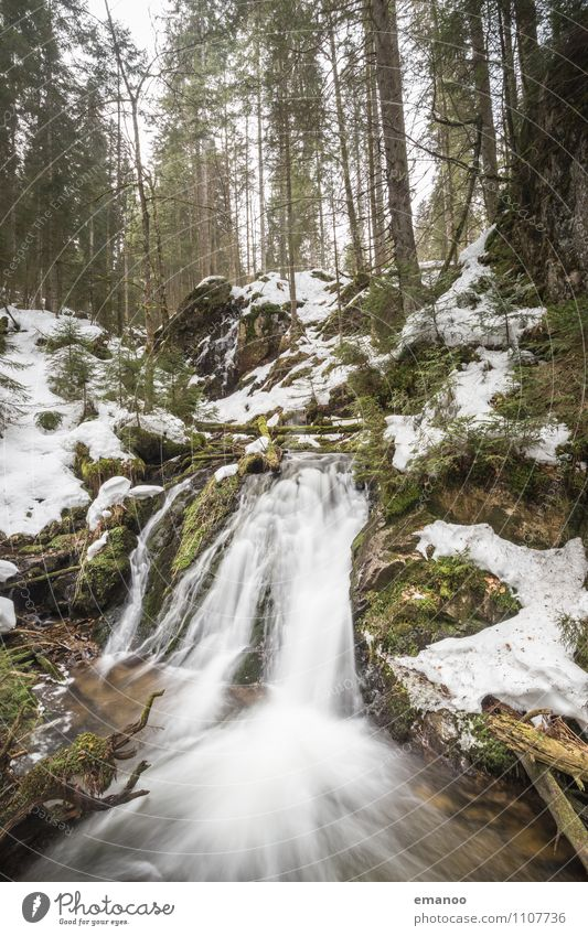 Schwarzwaldfoto Natur Ferien & Urlaub & Reisen Pflanze Wasser Baum Landschaft Winter Wald kalt Berge u. Gebirge Umwelt Frühling Schnee Felsen Eis Tourismus