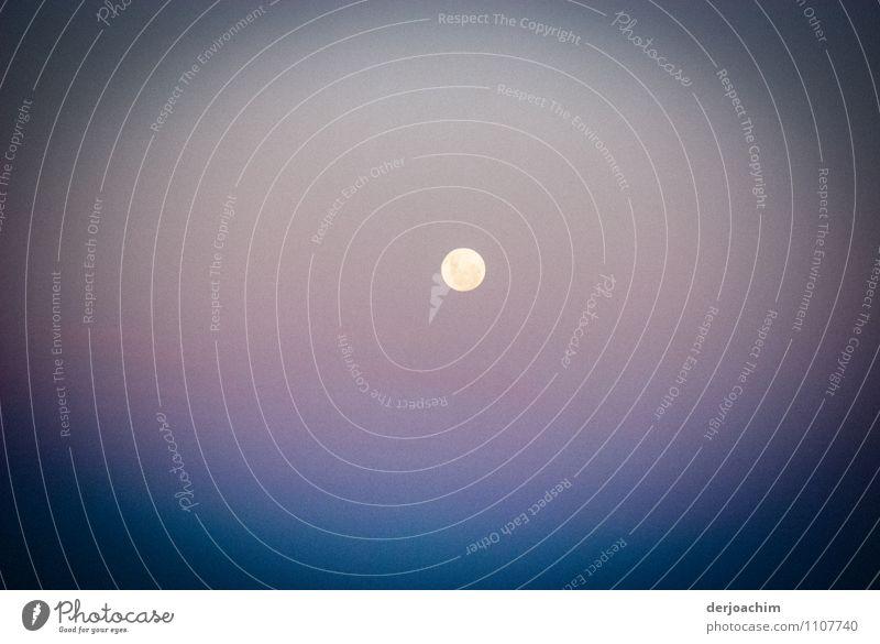 Abendstimmung Freude Erholung Freizeit & Hobby Fotografie Ausflug Mondaufgang Natur Sonne Sonnenaufgang Sonnenuntergang Sommer Schönes Wetter Wüste Outback