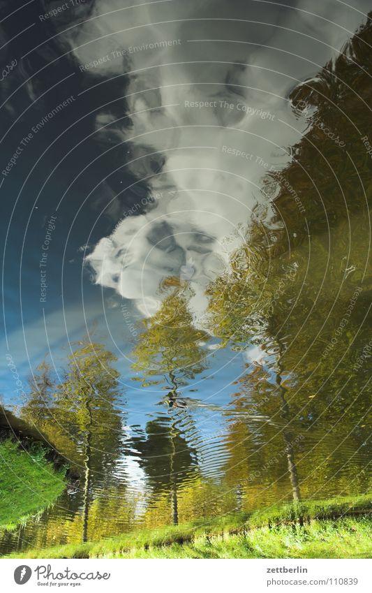 Unklare Landschaft Oberfläche Teich See Reflexion & Spiegelung Baum Allee Wald Wolken Herbst Vogel Sommer Fluss Bach Garten Park Wasser Schlossgraben reflektion