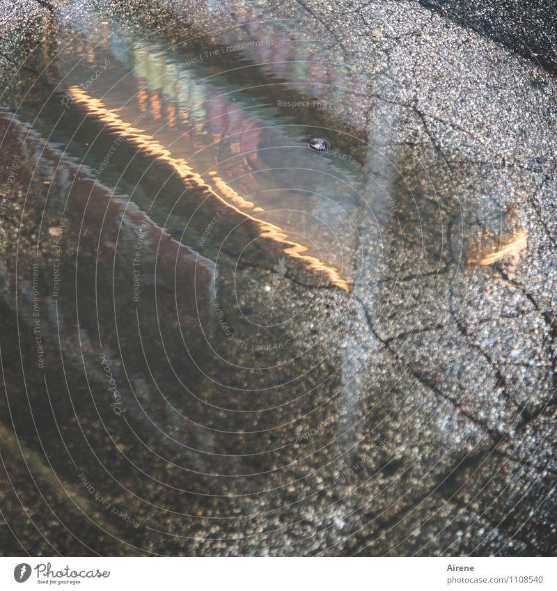 Lichter der Großstadt Straße Leuchtreklame Beleuchtung Beleuchtungselement Werbung Werbeschild Pfütze Riss Asphalt Straßenbelag Fußgängerzone Beton Zeichen