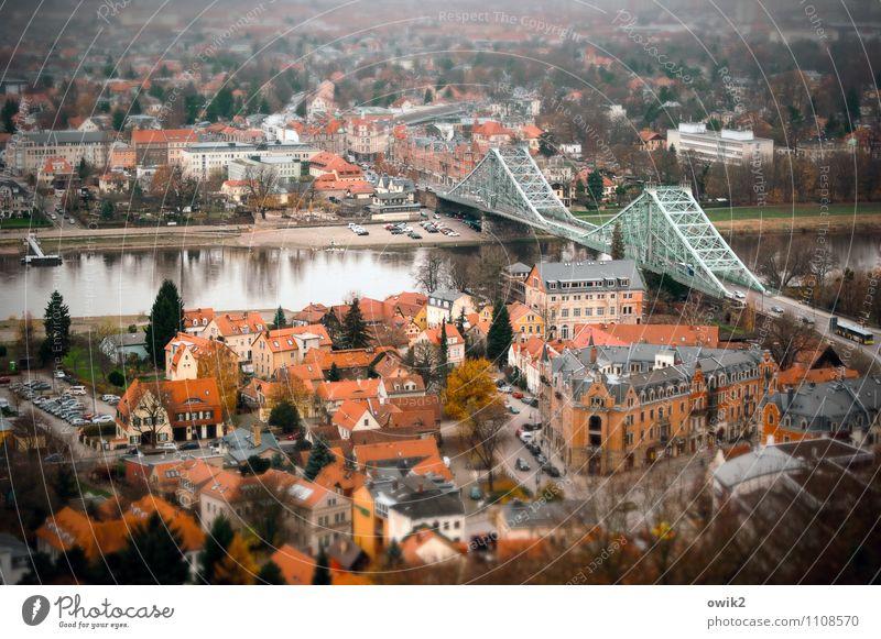 Dresden Loschwitz Tourismus Städtereise Baum Fluss Elbe Blaues Wunder Villa Stadt bevölkert Haus Fassade Dach Straße PKW Gelassenheit ruhig Sehnsucht Fernweh