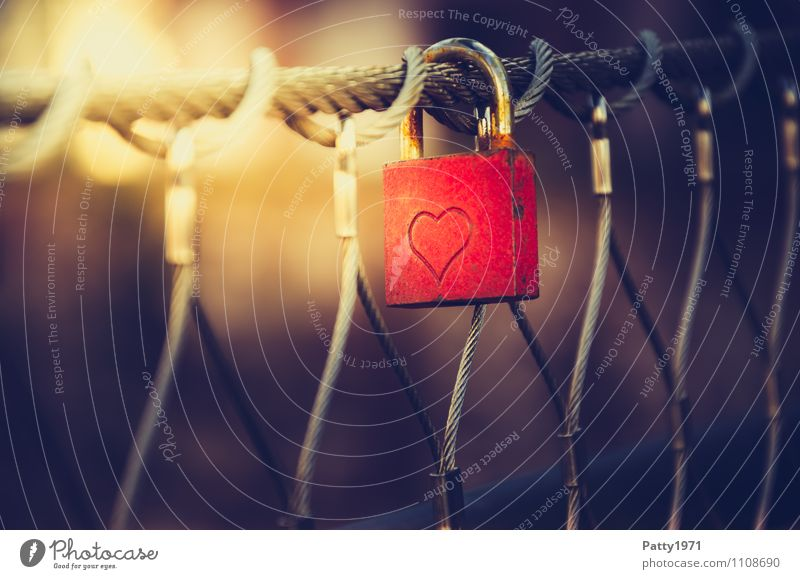 Liebesschloss rot Lifestyle Zusammensein Freundschaft Brücke Romantik Rost hängen Treue Sympathie Liebesbekundung Vorhängeschloss