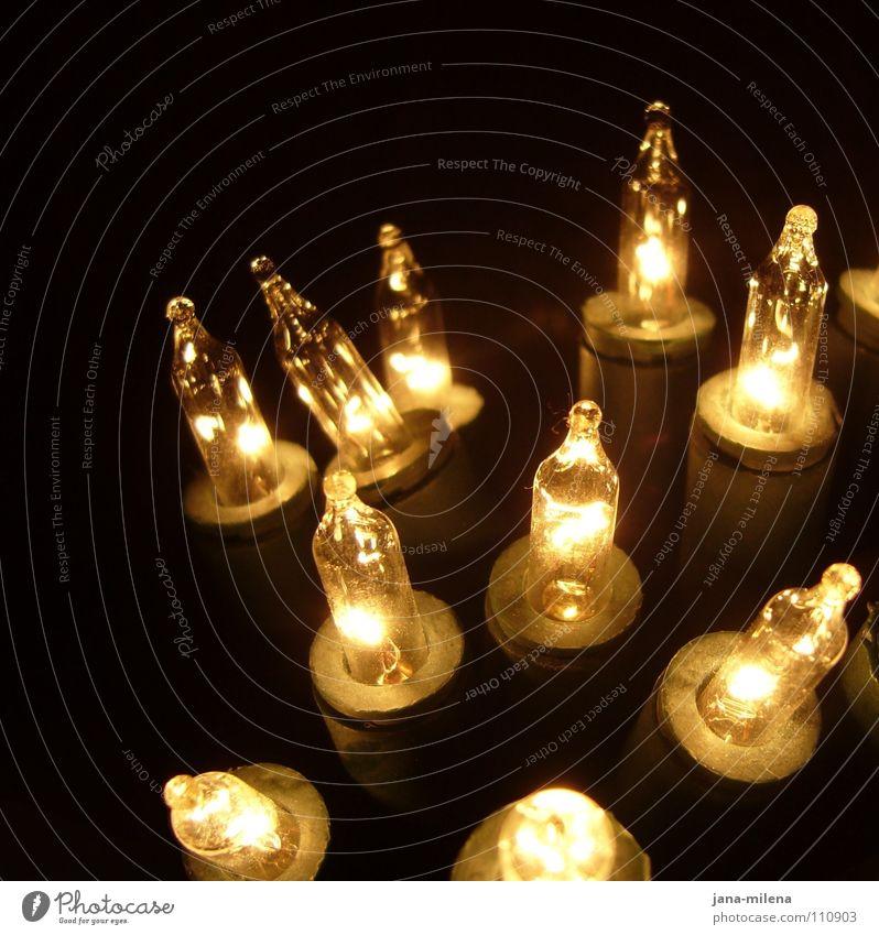 Erleuchtung Licht Erkenntnis erleuchten Glühbirne Lampe Lichterkette Weihnachtsmarkt Beleuchtung dunkel schwarz Lichtpunkt elektronisch Elektrisches Gerät
