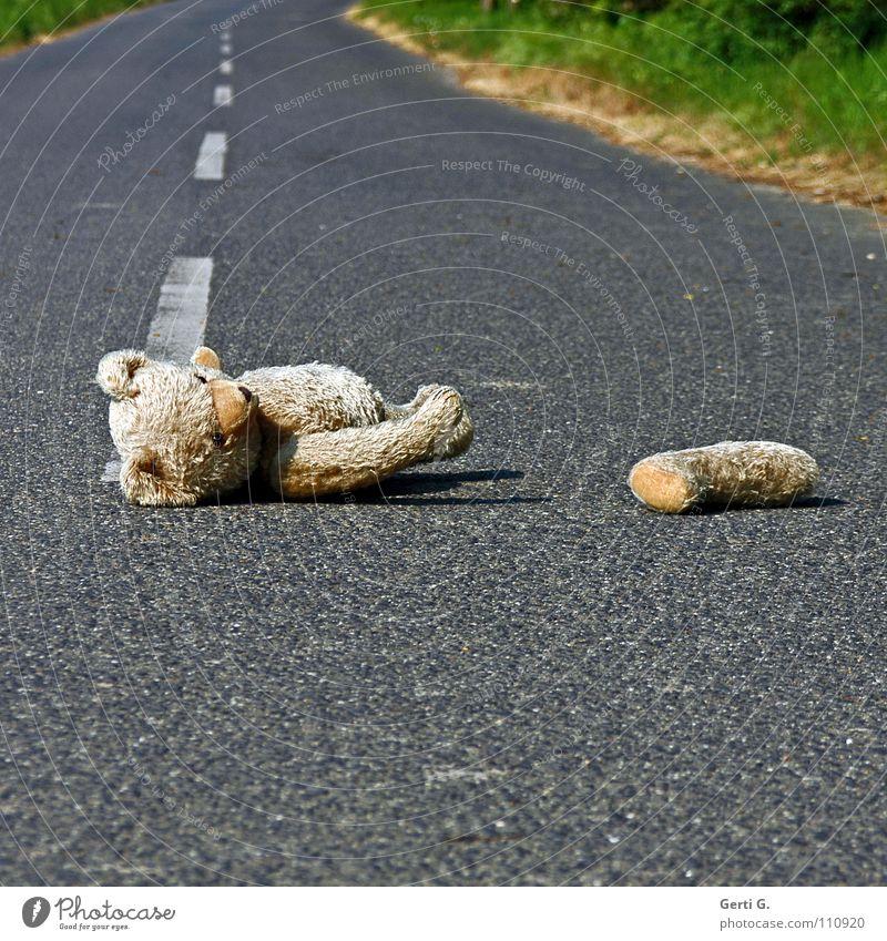 the poor hängen lassen Unfall Erste Hilfe verloren Verkehrsunfall Asphalt Straßenmitte Linie Streifen Sicherheit unsicher Spuren Tier Stofftiere Teddybär