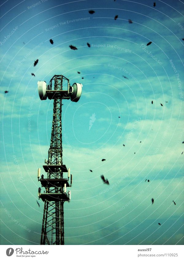 Fall Herbst Blatt Sendeleistung Jahreszeiten Industrie fallen Laubfall Turm Sendeturm Rundfunksendung