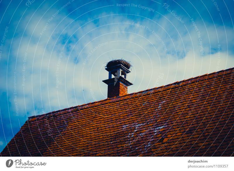 """"""" Noch frei"""" schön Sommer ruhig Wolken Haus Umwelt braun Deutschland Design hoch Lächeln Ausflug genießen beobachten einzigartig Dach"""