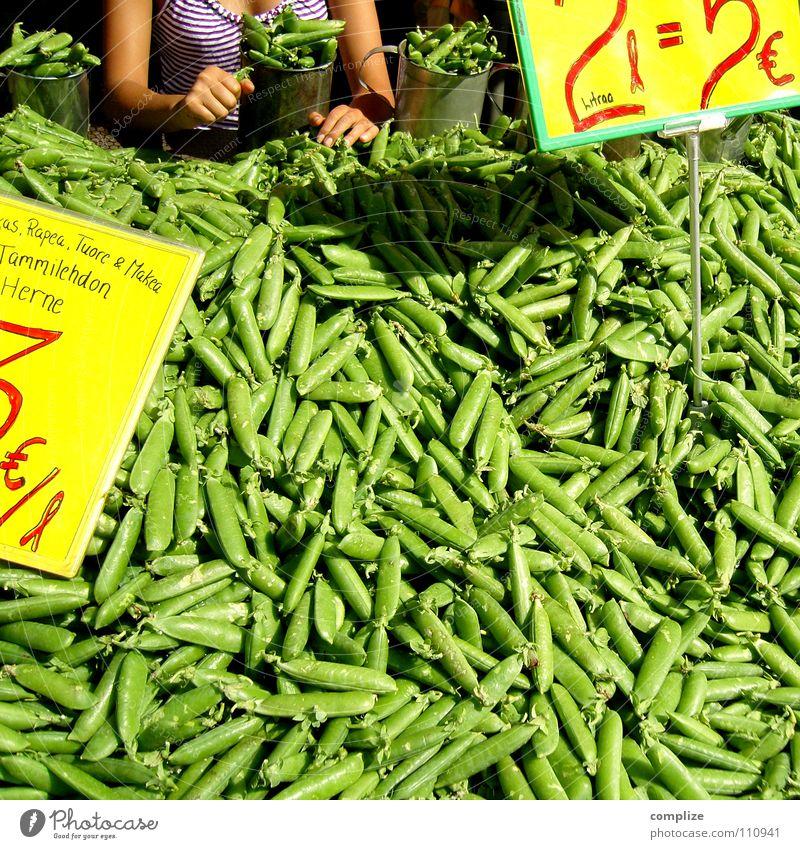 Die Frau mit den Bohnen schön grün Pflanze Hand Gesundheit Lebensmittel stehen Wachstum mehrere Ernährung Finger Kochen & Garen & Backen kaufen viele Küche