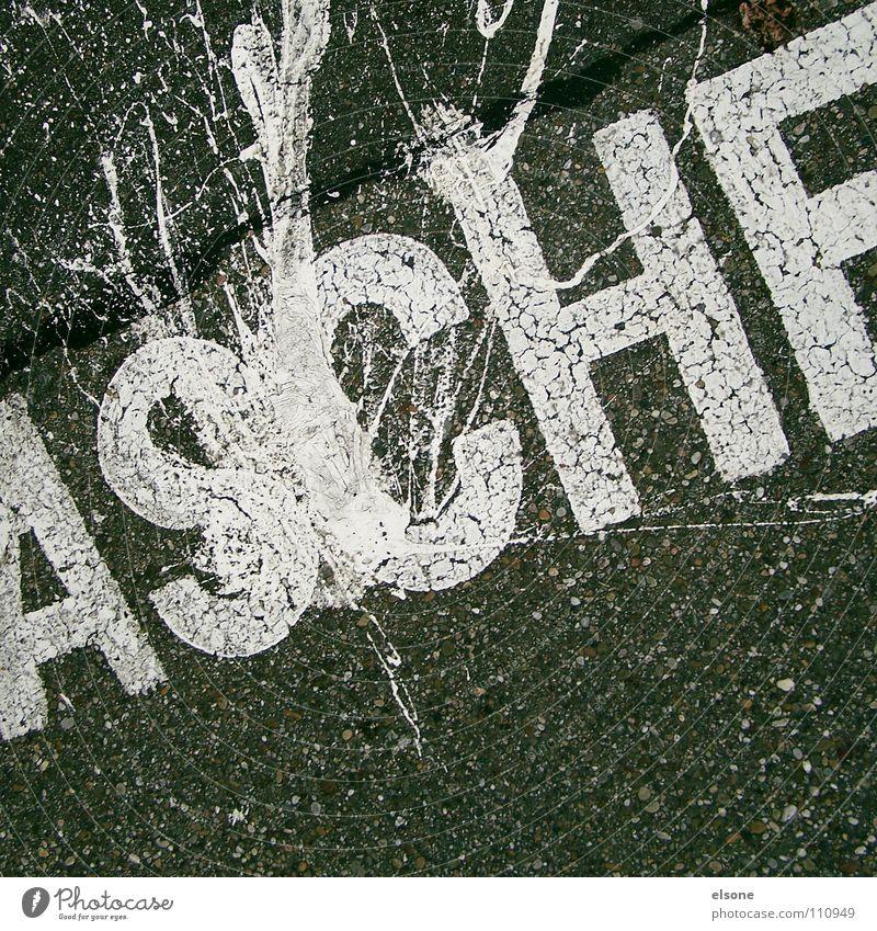 ::ASCHE:: weiß schwarz Farbe Straße grau Wege & Pfade Stein Schilder & Markierungen Beton Schriftzeichen Buchstaben Kommunizieren Zeichen Verkehrswege trashig
