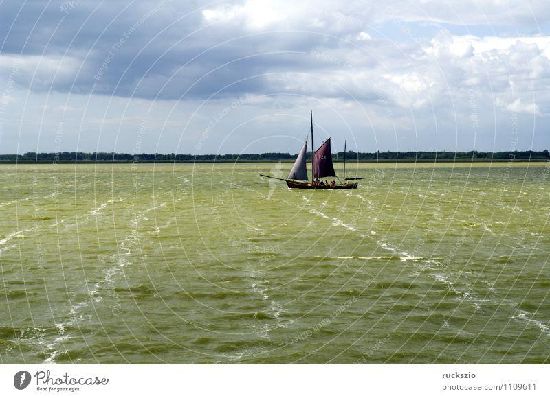 Zeesboot, Saaler Bodden, Landschaft Strand Meer Wellen Wasser Himmel Küste Ostsee See Segelboot Segelschiff Wasserfahrzeug Schwimmen & Baden Sport