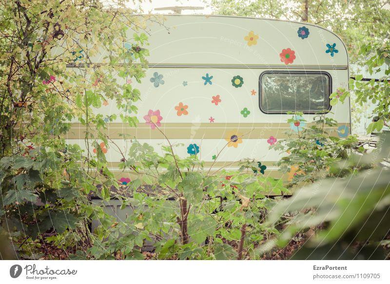 wohnen im Grünen Ferien & Urlaub & Reisen Tourismus Freiheit Häusliches Leben Wohnung Garten Pflanze Baum Blume Blüte Stadt Verkehr Wohnmobil Wohnwagen