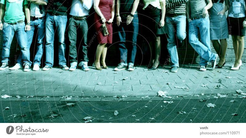 jeans is your life! Jugendliche Blatt Erholung Herbst Fuß Schuhe Beine Jeanshose Hose Chucks Mensch Bekleidung