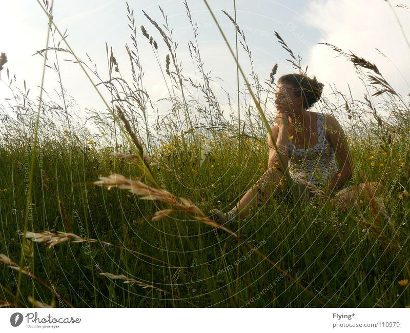 Grasgeflüster Frau Himmel Blume grün Sommer ruhig Ferne Erholung Wiese Frühling Zufriedenheit Feld schlafen Frieden Stengel