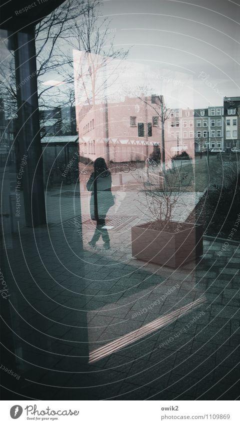 Vor der Klinik Junge Frau Jugendliche 1 Mensch 18-30 Jahre Erwachsene Baum Kleinstadt Stadtzentrum bevölkert Haus Park Fassade Fenster stehen warten eckig