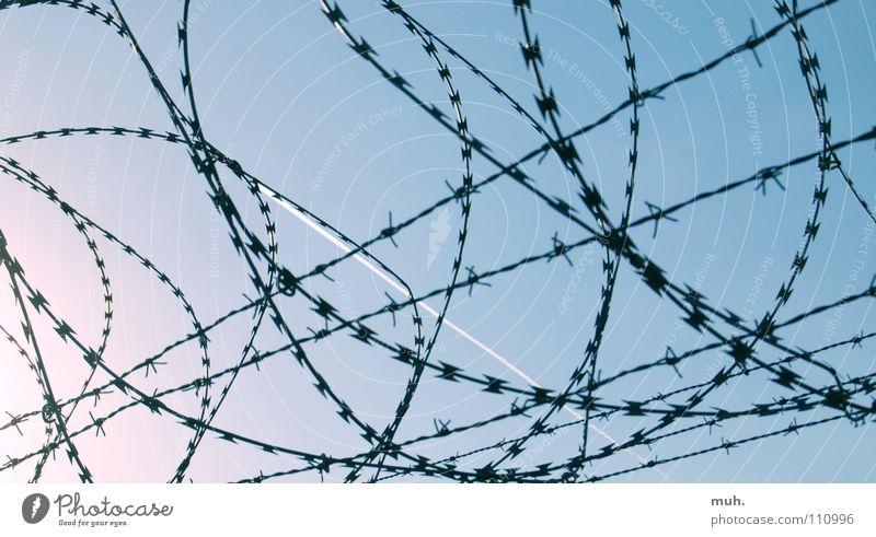 Grenzenlos? Himmel blau Freiheit Flugzeug Konzentration Flughafen Draht Stacheldraht Kondensstreifen