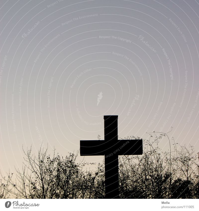 Kreuz Geäst Sträucher Religion & Glaube Silhouette Vordergrund schwarz Pastellton Halt finden Suche Denken Wegsehen brechen verlieren Trauer bewältigen