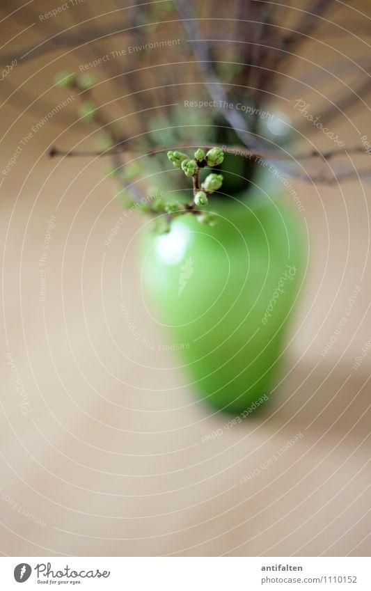 Frohe Ostern :-) Häusliches Leben Wohnung Innenarchitektur Dekoration & Verzierung Raum Wohnzimmer Blumenvase Vase Pflanze Sträucher Zweige u. Äste