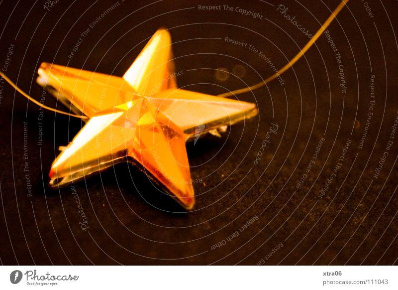 der stern nah Weihnachtsstern Weihnachten & Advent bedächtig beschwingt Stern (Symbol) gold christmas time noel Feste & Feiern