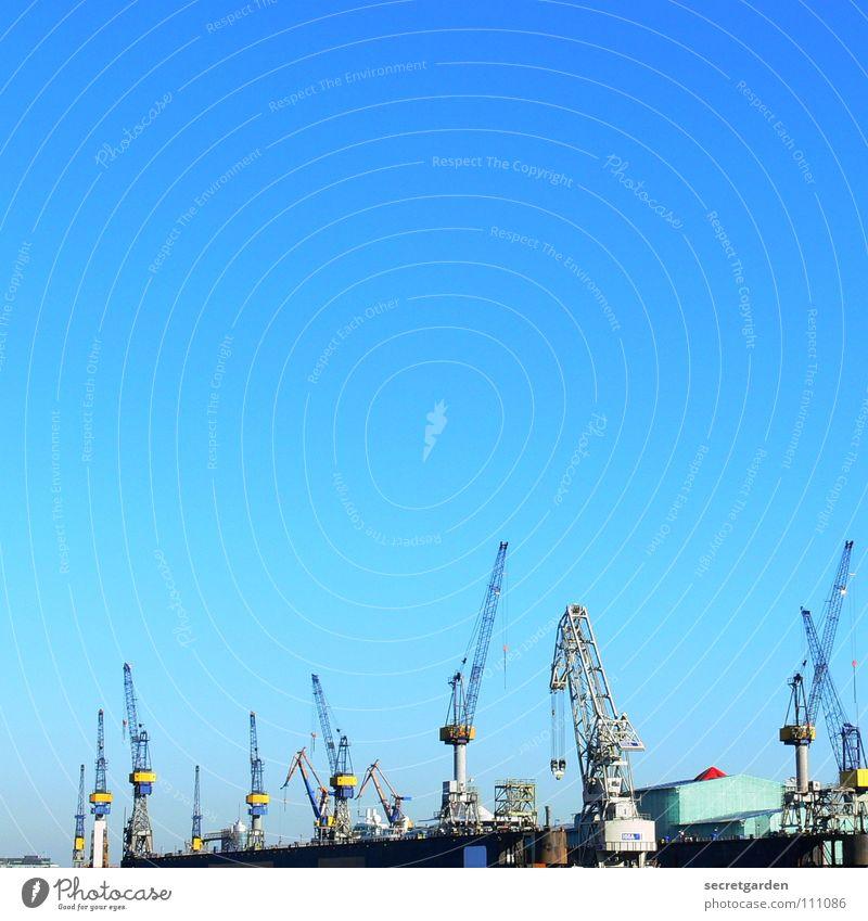 wo ist der 13. kran? Dock Wasserfahrzeug Stadt strahlend Kran Arbeit & Erwerbstätigkeit Arbeiter Physik Herbst Wellen Stahl Panorama (Aussicht) Maschine