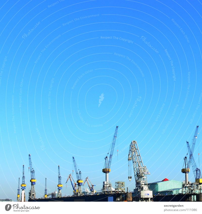 wo ist der 13. kran? Himmel blau Stadt rot gelb Herbst Wärme Wasserfahrzeug Wellen Arbeit & Erwerbstätigkeit Hamburg Macht Industrie Technik & Technologie Fluss Güterverkehr & Logistik