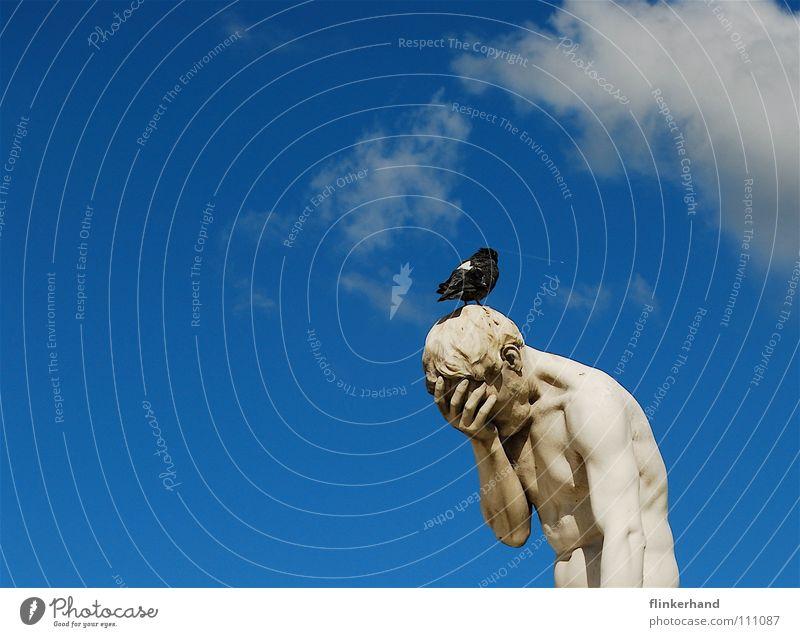 respektlos I Körper Sommer Mensch Mann Erwachsene Kunst Tier Himmel Wolken Vogel Taube muskulös blau weiß Trauer Verzweiflung Respekt Verachtung Statue antik