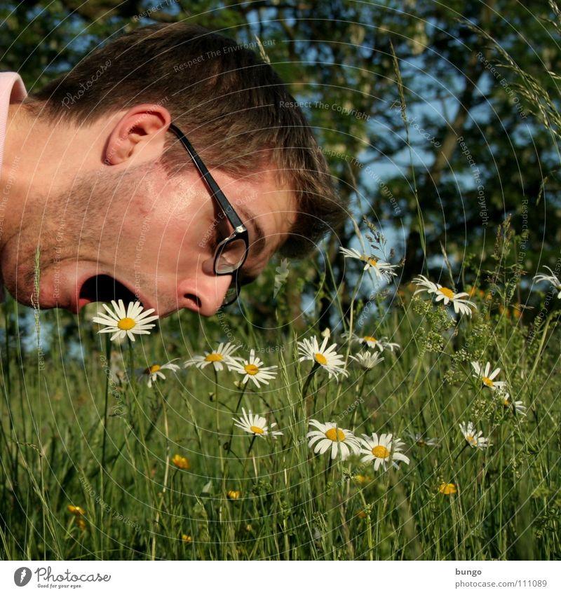 Marc ist unersätt(z)lich Mann Natur Blume Pflanze Gesicht Ernährung Tod Blüte Gras Gesundheit lustig Essen verrückt Brille Appetit & Hunger Freak