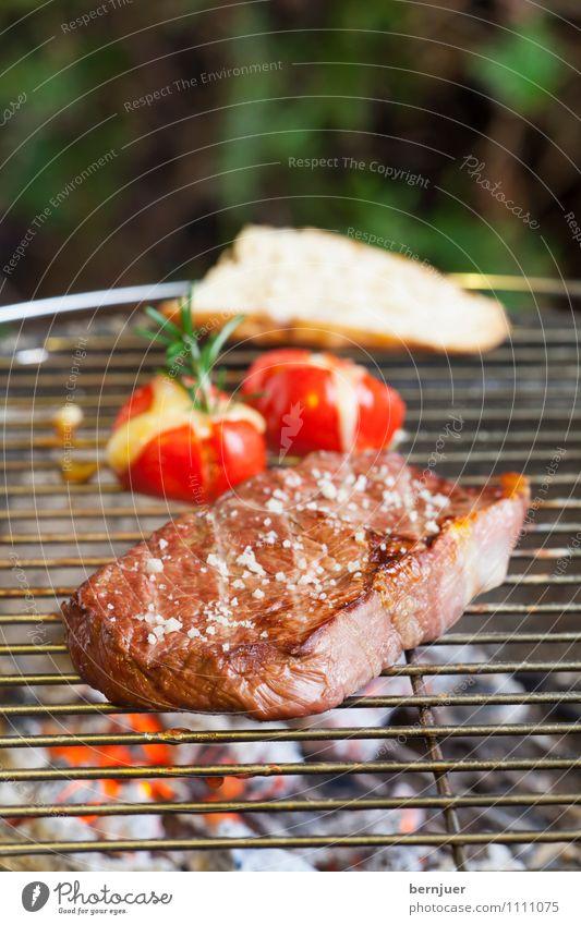 Grillen im Kopf Lebensmittel Fleisch Gemüse Brot Bioprodukte Slowfood Billig gut braun grün Steak Rindfleisch Tomate Grilltomate Baguette Rosmarin Grillrost