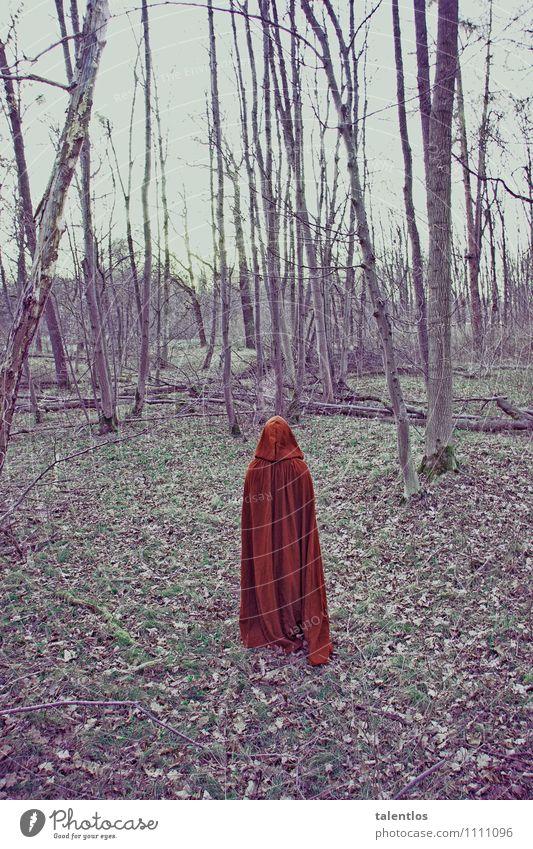 red riding hood Mensch Mantel dunkel gruselig trist rot Traurigkeit Trauer Tod Liebeskummer Einsamkeit verstört Rotkäppchen Umhang Wald karg unheimlich