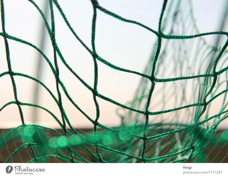 vernetzt... blau grün Sommer Freude Sport Spielen Stimmung orange Freizeit & Hobby authentisch Lebensfreude einfach einzigartig Fußball Netzwerk Kunststoff