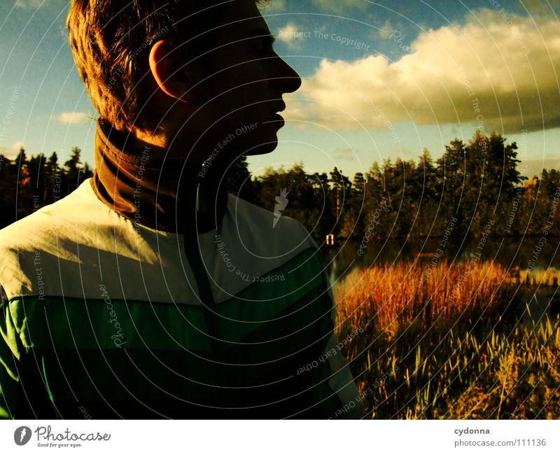 looking back Mann Kerl Neugier geheimnisvoll Vogelperspektive Wald Wiese Teich Licht retro dunkel Silhouette Porträt Wolken schön Denken Identität Erkenntnis