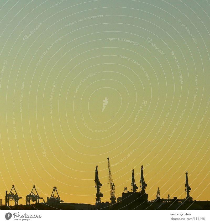 kranorama Himmel blau Stadt rot Sonne gelb Herbst Wärme Wasserfahrzeug Wellen Arbeit & Erwerbstätigkeit Hamburg Macht Industrie Technik & Technologie Fluss