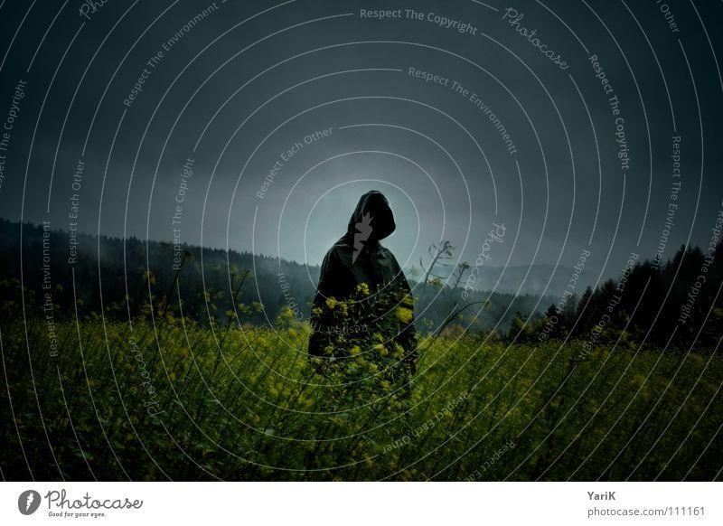 dark man walks schlechtes Wetter Raps Feld Wiese Baum Wald Horizont Hügel Nebel nass feucht kalt stehen gehen geheimnisvoll grün gelb Täter böse Mörder gruselig