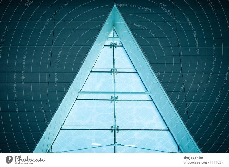 Spitzbogen in Dubai blau schön Sommer Fenster Architektur Innenarchitektur außergewöhnlich Design Glas ästhetisch Lächeln Ausflug genießen Spitze beobachten