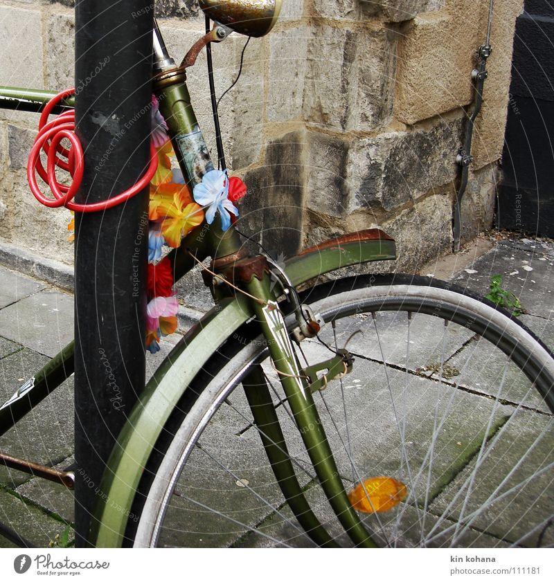 winterblüten alt rot Einsamkeit Farbe Straße grau Bewegung Metall Fahrrad trist Vergänglichkeit verfallen Bürgersteig Burg oder Schloss Rost Blech