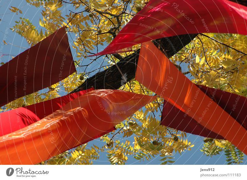 Herbstbanner Himmel Baum blau rot Blatt gelb orange Wind Fahne violett Dekoration & Verzierung Ast Stoff Zweig