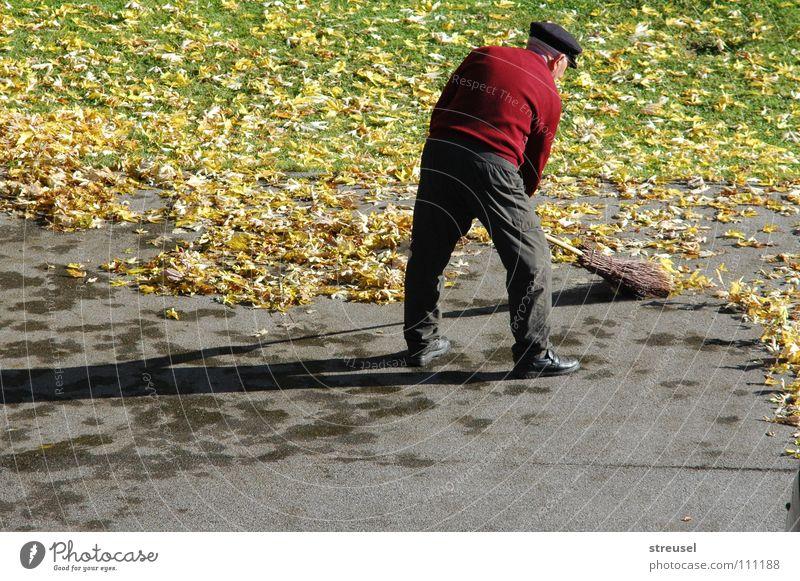 Herbstfeger Mensch Mann Natur grün rot Blatt Einsamkeit ruhig Erwachsene gelb Umwelt Straße Leben Wiese Herbst Senior