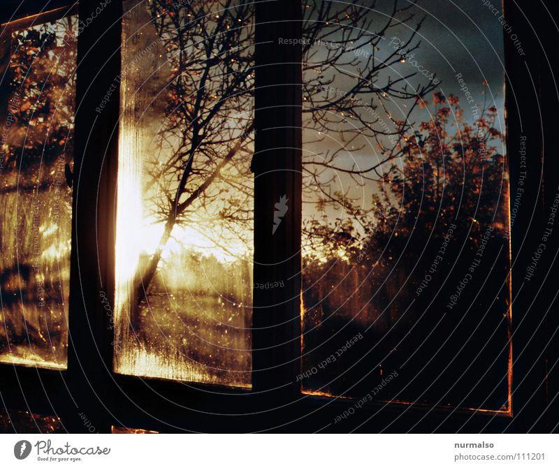 Guter Morgen II Fenster Sonnenaufgang Röte Stimmung Osten Wolken aufstehen wach Herbst Panorama (Aussicht) Club Moral Blick Morgendämmerung Rahmen orange blau
