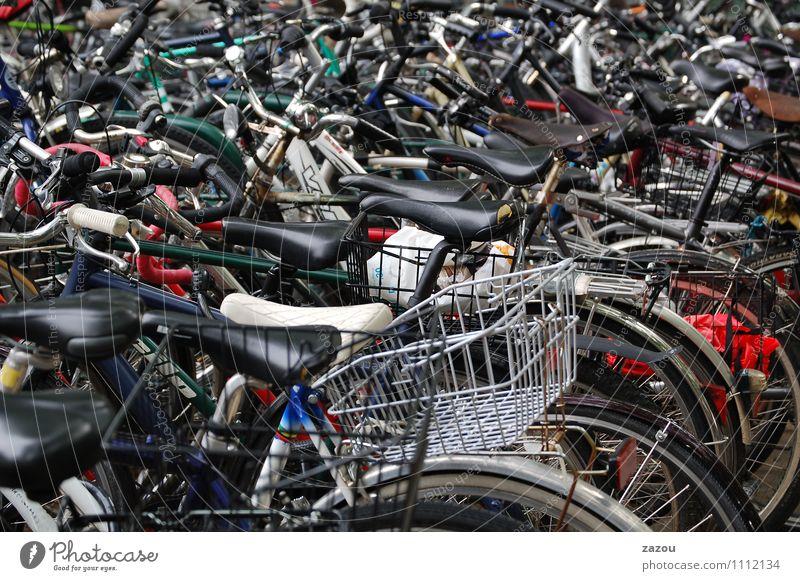 Fahrrad ohne Fisch... Stadtzentrum Personenverkehr Öffentlicher Personennahverkehr Fahrradfahren Bewegung Ordnung Fahrradsattel Farbfoto Außenaufnahme