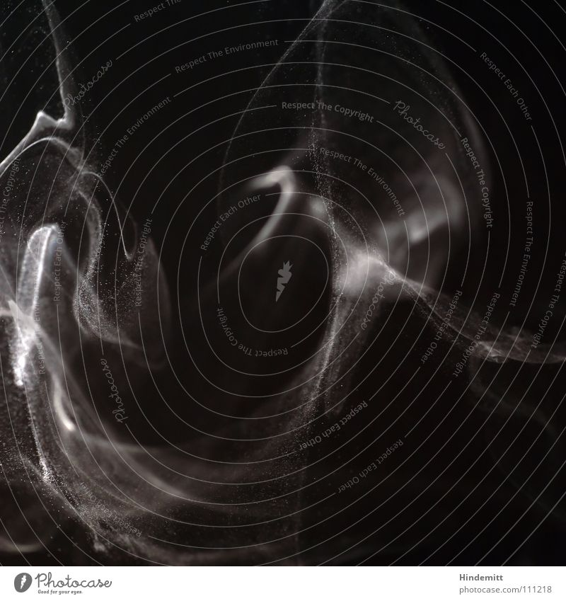 Schall und Rauch schwarz weiß Staub Teilchen Geschwindigkeit Luft Wellen Gegenlicht Feuer Brand Makroaufnahme Nahaufnahme hell Dynamik Duft brennen Übelriechend