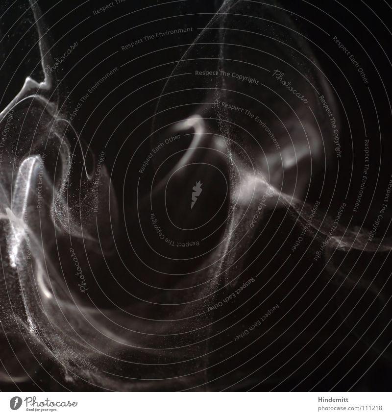 Schall und Rauch weiß schwarz Luft hell Wellen Brand Feuer Geschwindigkeit Rauch Duft Dynamik brennen Staub Teilchen Übelriechend