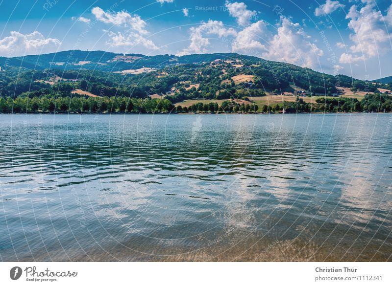 Stubenbergsee Natur Ferien & Urlaub & Reisen Pflanze Wasser Sommer Sonne Baum Erholung Landschaft ruhig Wolken Strand Berge u. Gebirge Schwimmen & Baden See Luft