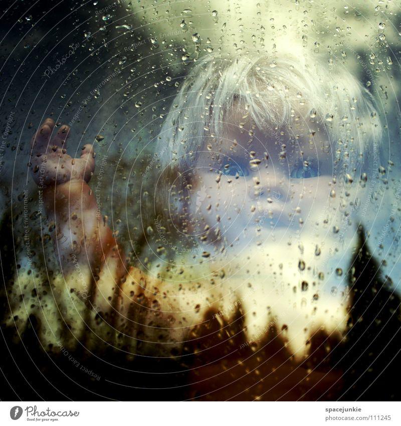 Behind the window Wasser Himmel Baum Wolken Einsamkeit Fenster Regen Angst Glas Wassertropfen nass Horizont Puppe skurril Panik