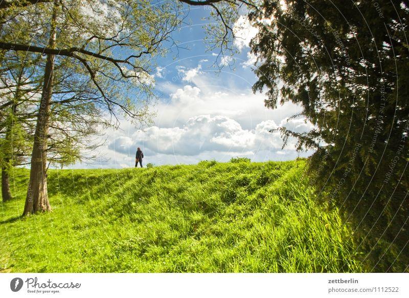 Spaziergang Mensch Himmel Sonne Baum Einsamkeit Wolken Wiese Frühling Gras Wege & Pfade Park Freizeit & Hobby Tourismus Sträucher wandern einzeln