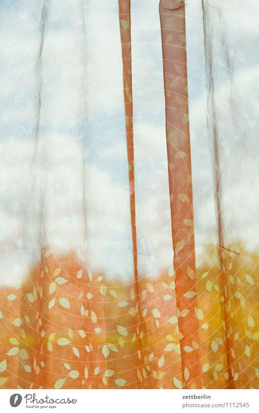 Gardine Himmel Sommer Wolken Fenster Innenarchitektur Wohnung Raum Häusliches Leben Wind Textfreiraum Aussicht Stoff Falte durchsichtig Wohnzimmer Vorhang