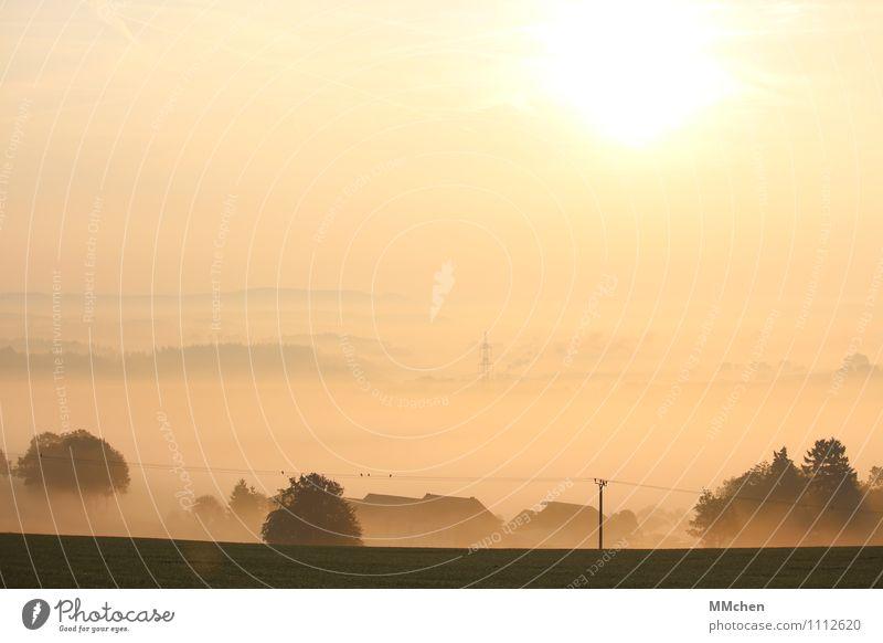 MorgenRöte Himmel Natur Ferien & Urlaub & Reisen Sommer Sonne Landschaft ruhig Haus Berge u. Gebirge Herbst Horizont Zufriedenheit Häusliches Leben Nebel Klima