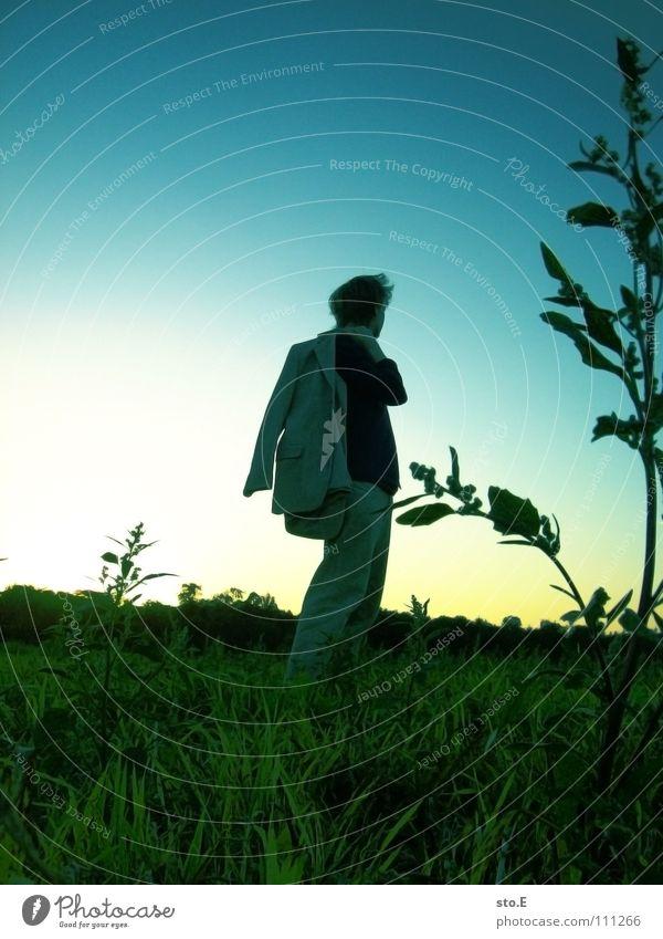 going home pt.2 Kerl gehen Feld Wiese Pflanze Sonnenuntergang umfallen Kondensstreifen stehen Osten Freude Mensch Typ personenfoto Abend Silhouette Himmel