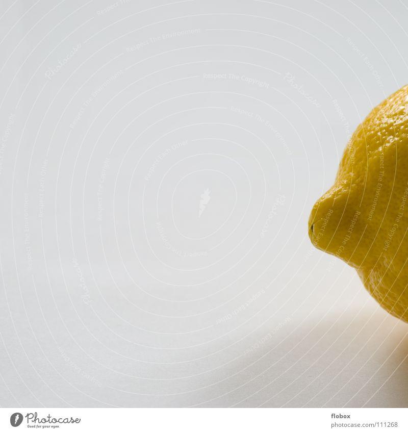 Stummelschwänzchen Zitrone zitronengelb Zitrusfrüchte Fruchtfleisch Natur Vitamin C Gesundheit frisch Saft rund Hälfte Sommer Cocktail Erfrischung Zitronensaft