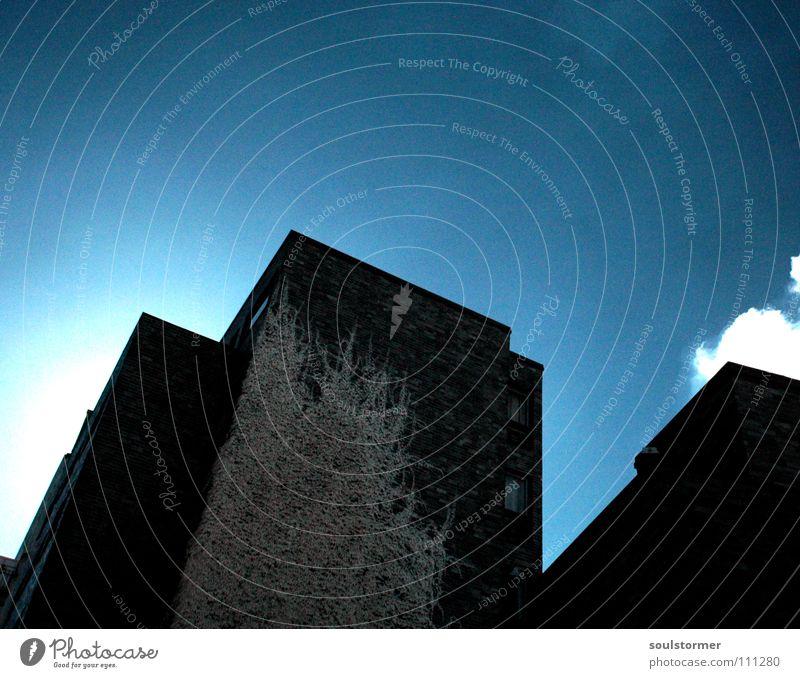 Hauswand in IR Himmel blau weiß Baum Pflanze Blatt schwarz Fenster dunkel Wand Architektur grau Restaurant Surrealismus Ranke
